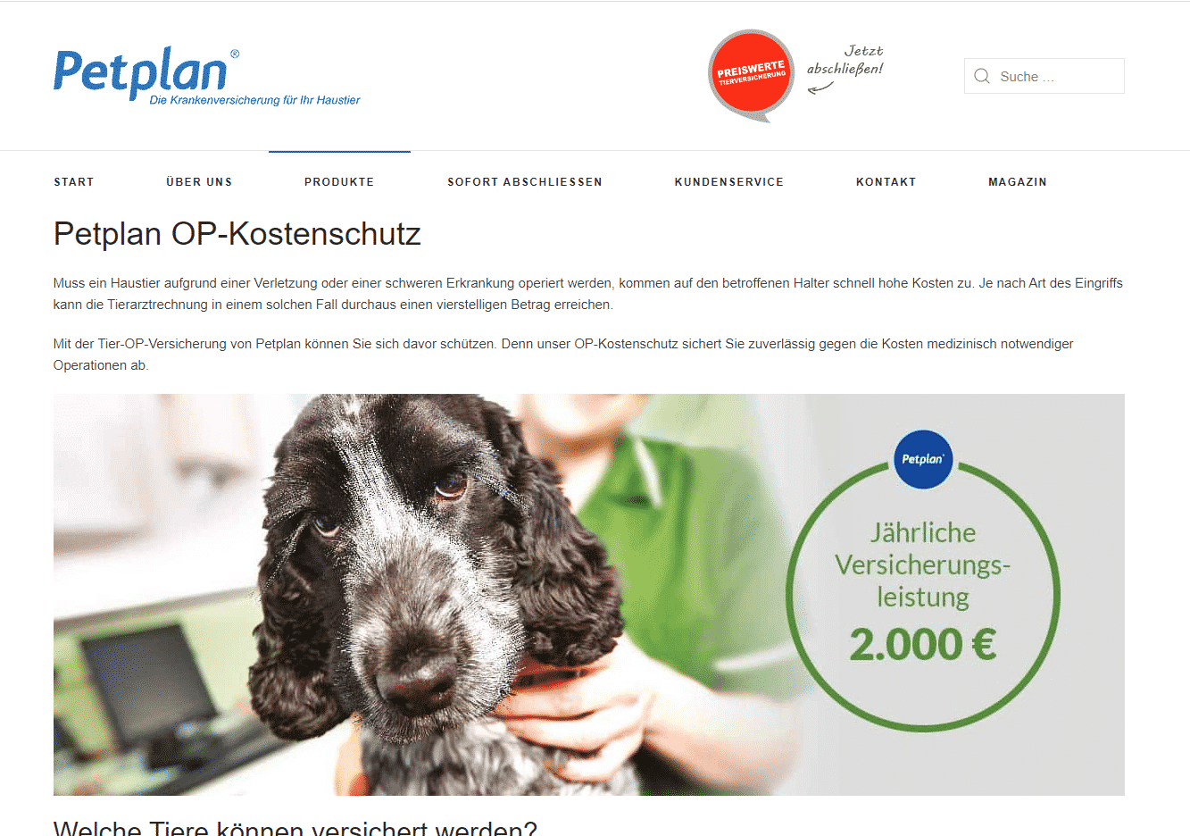 Screenshot von Petplan